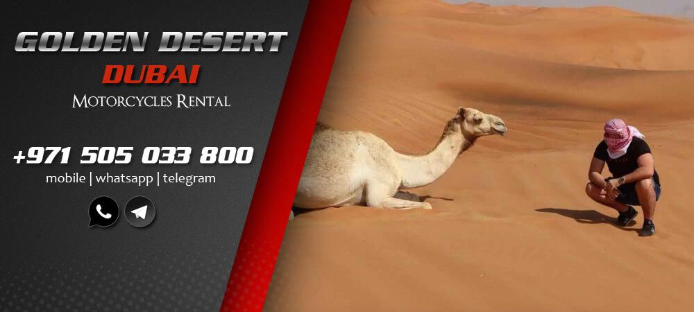 http://www.goldendesert-dubai.com/wp-content/uploads/2021/06/desert_safari_adventure_dubai.jpg